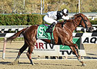 Jacaranda Rules Rivals in Tempted Stakes
