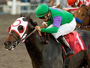 Jack o' Lantern wins the 2008 Hollywood Prevue.