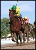 Joanies Bella Rallies to Win Arlington Washington Lassie