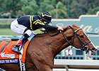 Judy the Beauty Wins Female Sprinter Eclipse