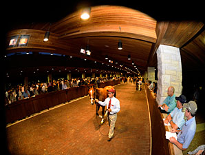 Keeneland Select Sessions 'Surprisingly Good'