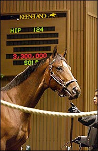 Pulpit Colt Brings Record Price at Keeneland Sale; Numbers Rise