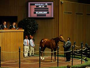 Keeneland November Sale Slumps at Start