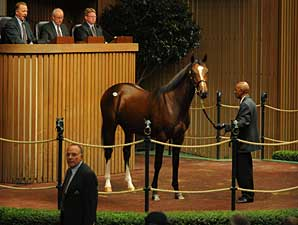 A.P. Indy Colt Continues to Top Sale