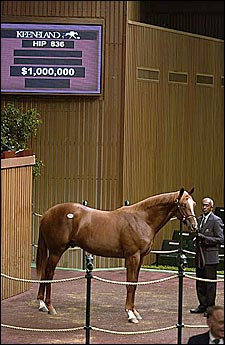 O'Byrne Goes to $1 Million For Mr. Greeley Colt