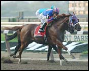 Breeders' Cup Sprint Preview