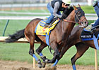 Liaison, Stealcase Work for Travers
