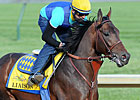 GI Winner Liaison to Stand at Spendthrift