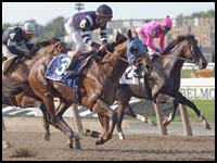Lido Palace to Skip Breeders' Cup Classic