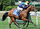 Lubash Looks for Ashley T. Cole Stakes Repeat
