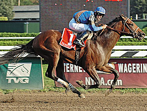 Four Graded Winners Contest Derby Trial
