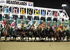 Poll Shows Support for Slots at Meadowlands