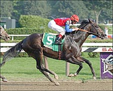 Medaglia d'Oro Shines Brilliantly in Whitney