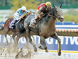 Midnight Lute wins the 2007 Breeders' Cup Sprint.