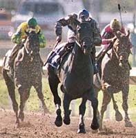 Louisiana Derby Winner Mighty Retired