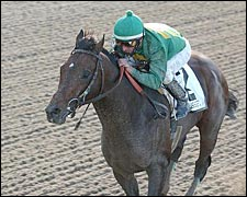 Mineshaft Shakes Tiger Loose in Woodward