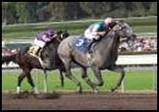 Santa Anita Race Report: Monster Mast