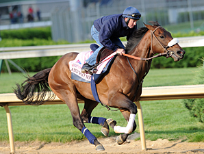 And Why Not Fires Oaks Bullet; 4 Others Work