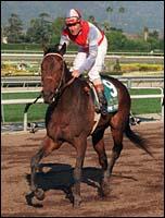Mr Purple Registers First Stakes Winner