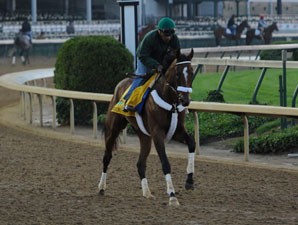 Mucho Macho Man jogging at Churchill Downs 5/4/2011.
