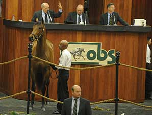 Red Vow Brings $625,000 at OBS Sale