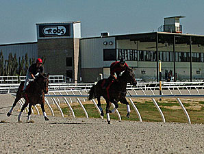 Ocala Industry May Seek Racing Permit