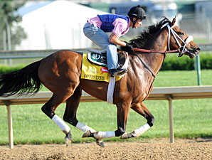 Optimizer May Carry Calumet Silks in Derby