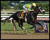 Saratoga Race Report (Cont.)