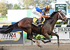 Overanalyze Completes Pletcher Stakes Sweep