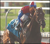 Peace Rules in Right Spot at Fair Grounds