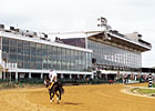 Pimlico Sets Stakes; &#39;Special&#39; Returns