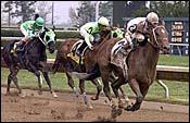 Posse Lassoes Lafayette Stakes