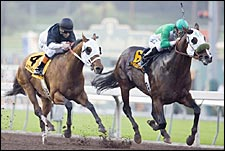 Cal-Bred Proud Tower Too Wins Malibu Duel