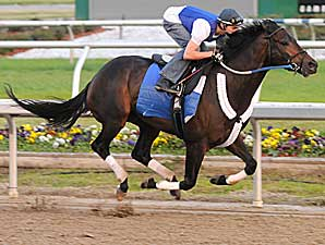 Pyro Works Six Furlongs at Keeneland