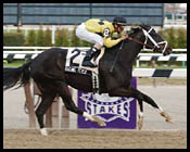 Raging Fever Invades for Chicago Handicap
