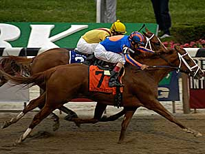 Belmont Park Set for 59-Day Meet