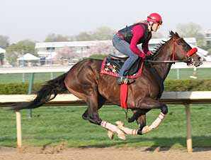 Recapturetheglory Works at Churchill
