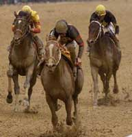 Preakness Winner Red Bullet Retired
