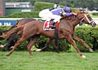 Grade II Winners Clash in Clement Hirsch