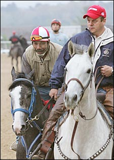 'Rocky 50-50 for Arkansas Derby; Lexington Stakes More Likely