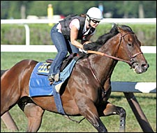 Probable Travers Fav Roman Ruler Works