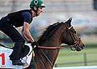 U.S. Ready to End Dubai World Cup Drought