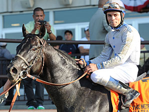 Sahara Sky Expected to Run in Palos Verdes