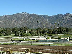 Santa Anita's Main Track Opened