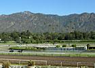 Santa Anita Park: Monday, Monday