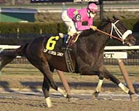 Say Florida Sandy Becomes Two-Time Gravesend Winner
