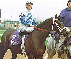 Evenly-Matched Field Entered in Gotham