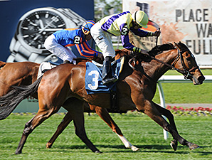 Sea Queen Surprises for Wonder Again Win
