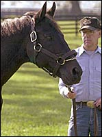 Recovered Seattle Slew Begins 2001 Breeding Season
