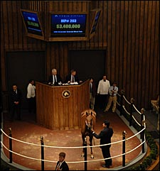 Fasig-Tipton November Sale Enjoys Big Upswings; Sharp Lisa Brings $3.4 Million